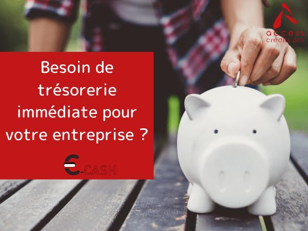 E-CASH des solutions CrediPro Guadeloupe-IDN